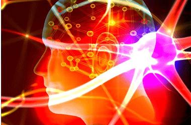 The Amacing World of Haptics